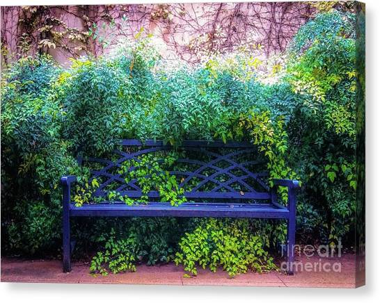 Canvas Print featuring the photograph The Blue Park Bench by D Davila