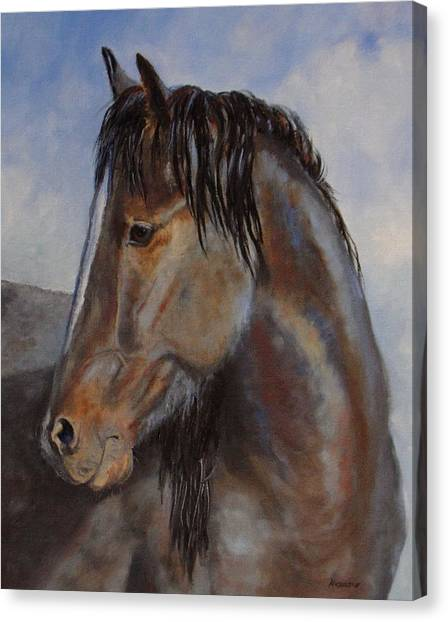 The Blue Roan Canvas Print by Debra Mickelson