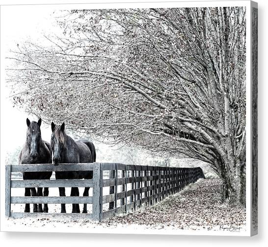 The Boys Of Fall Canvas Print