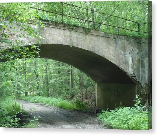 The Bridge Canvas Print by Robyn Leakey