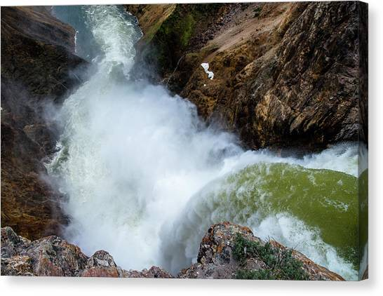 The Brink Of The Lower Falls Of The Yellowstone River Canvas Print
