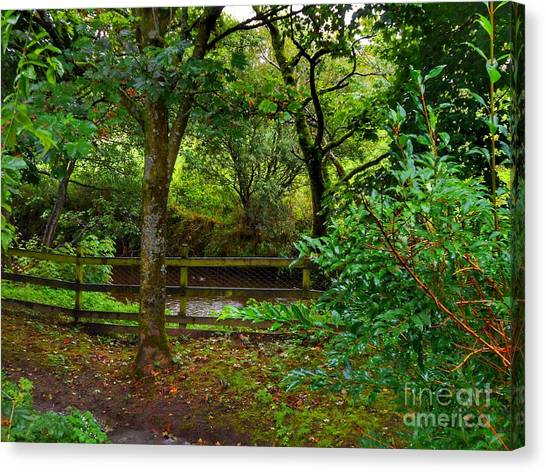 The Brook At Gibbon's Bridge Canvas Print