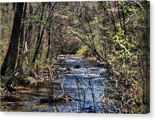 The Brook Canvas Print