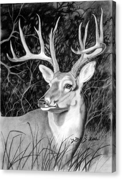 The Buck Canvas Print