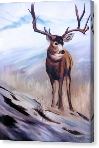 Monster Buck Canvas Print - The Buck by Joyce Timberlake