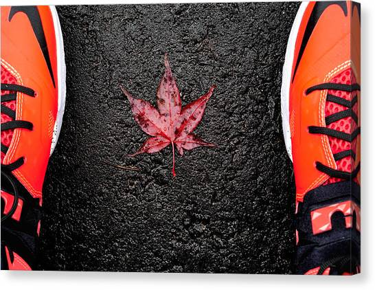 Toronto Maple Leafs Canvas Print - The Canadian Flag Of The Streets by Hani Ramzan