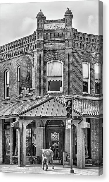 The Carey Building Black And White Canvas Print by JC Findley