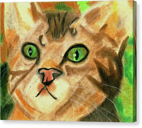 The Cat Face Canvas Print
