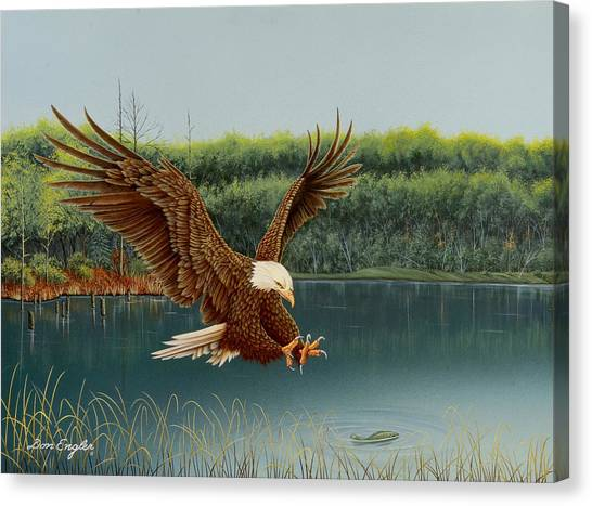 Eagle In Flight Canvas Print - The Catch by Don Engler