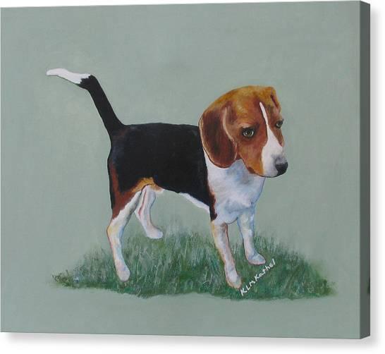 The Cautious Beagle Canvas Print