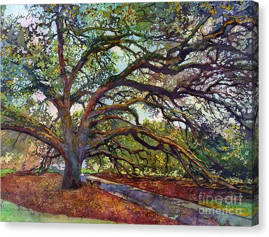 Texas A Canvas Print - The Century Oak by Hailey E Herrera