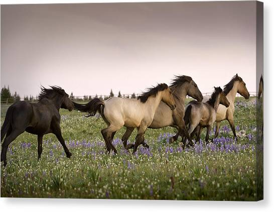The Chase 1 Canvas Print