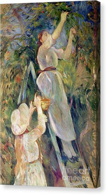Fruit Trees Canvas Print - The Cherry Picker by Berthe Morisot