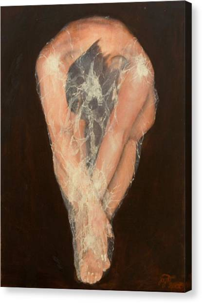 The Chrysalis Canvas Print by Jane  Simpson