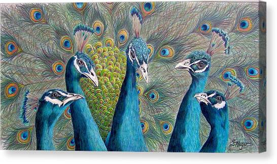 Peacocks Canvas Print - The City Council by Susan Moyer