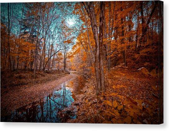 The Color Of Fall Canvas Print