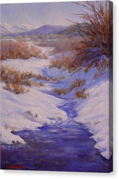 The Color Of Winter Canvas Print by Debra Mickelson