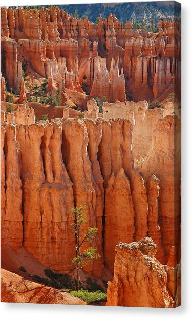 The Colors Of Bryce Canyon Canvas Print