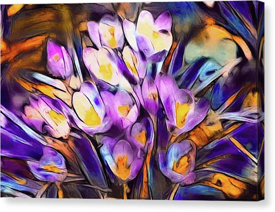 The Colors Of Crocus Canvas Print
