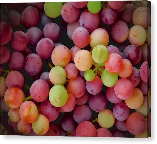 Colors Of Grapes Canvas Print
