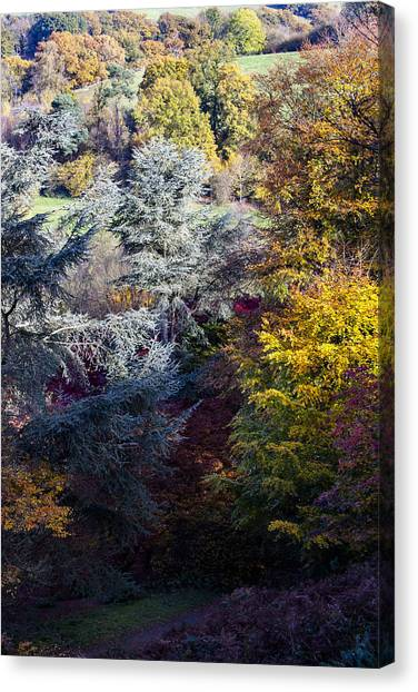 The Colours Of Autumn Canvas Print