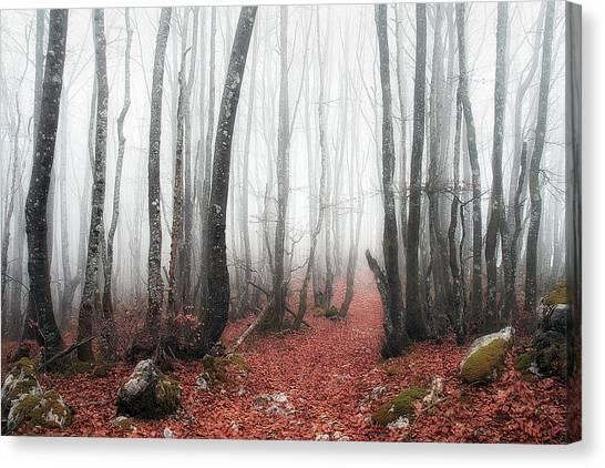 The Corridor Canvas Print
