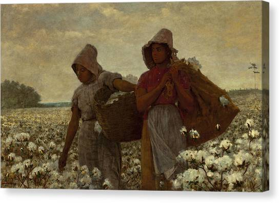 Winslow Canvas Print - The Cotton Pickers by Winslow Homer