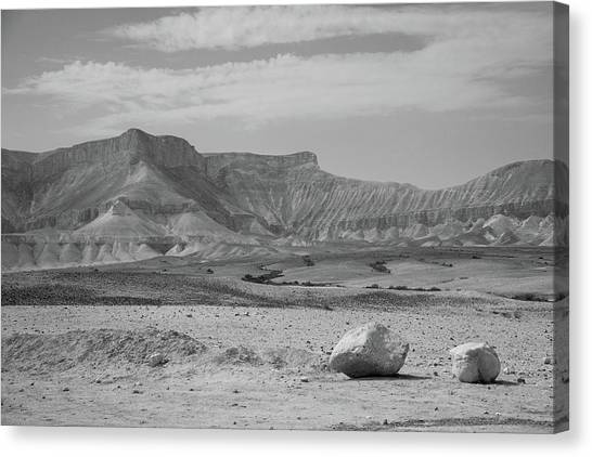 the couple of stones in the desert II Canvas Print