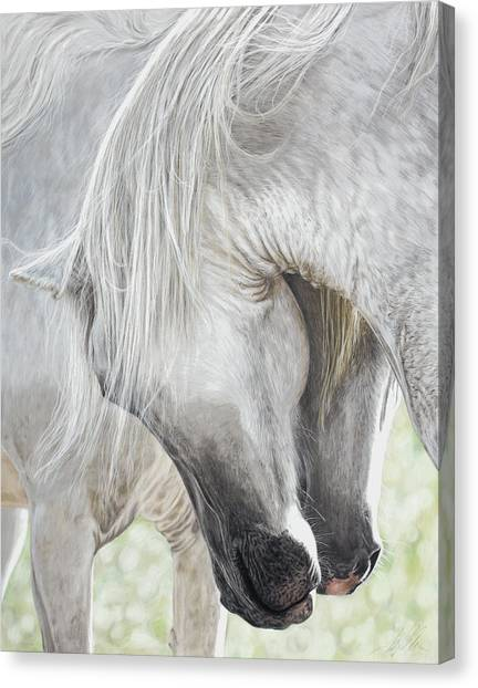 The Courtship Canvas Print