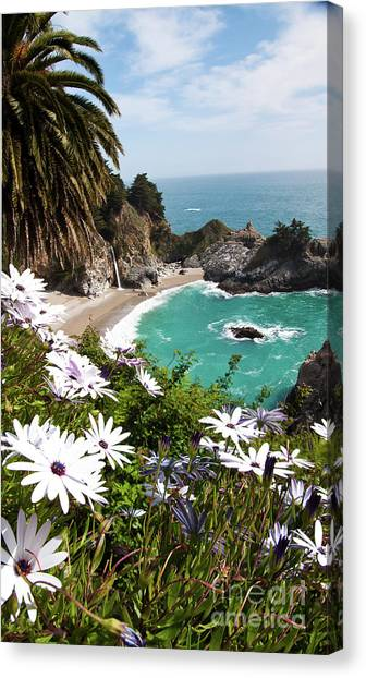 The Cove Canvas Print by Digartz - Thom Williams