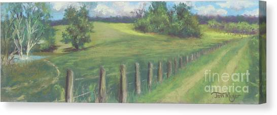 The Cow Path To The Pond Canvas Print by Terri  Meyer