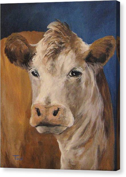 The Cow Canvas Print by Torrie Smiley