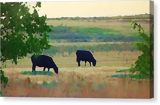 The Cows Next Door Canvas Print