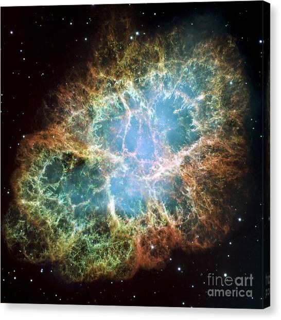 Pulsar Canvas Print - The Crab Nebula by Stocktrek Images