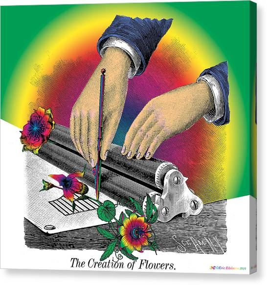 The Creation Of Flowers Canvas Print