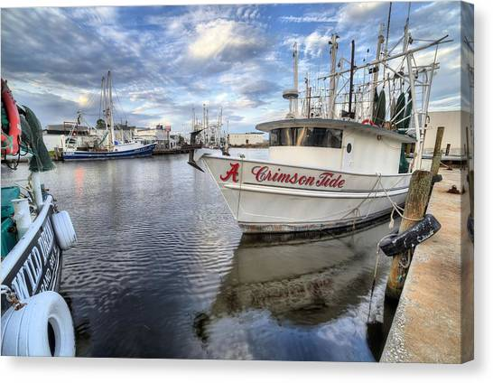 The University Of Alabama Canvas Print - The Crimson Tide by JC Findley