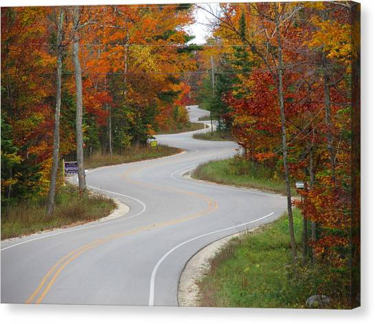 The Curvy Road Canvas Print