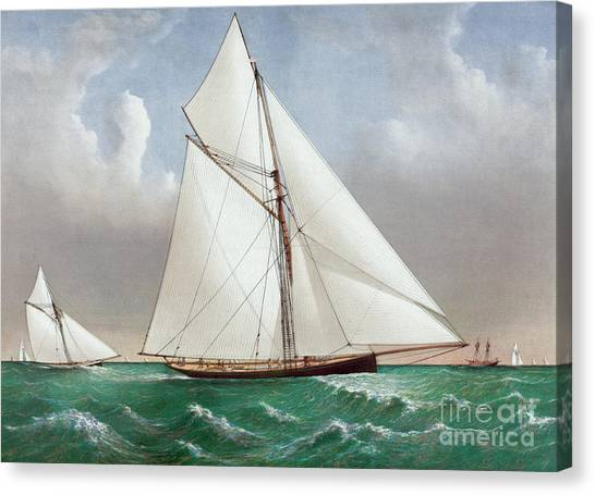 Currier And Ives Canvas Print - The Cutter Genesta by Currier and Ives