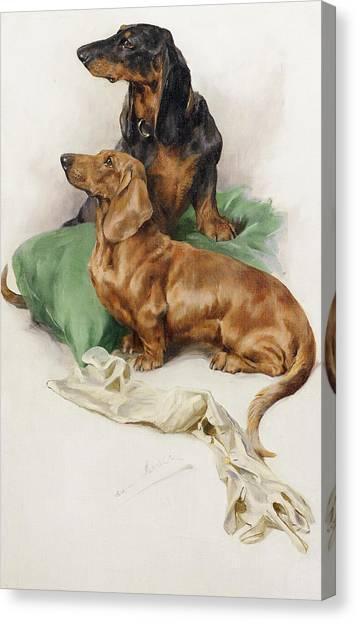 Dachshunds Canvas Print - The Dachshunds by Arthur Wardle