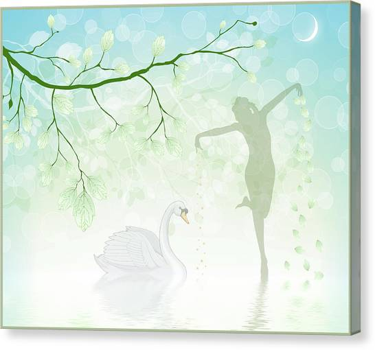 The Dance Of The Swan Canvas Print