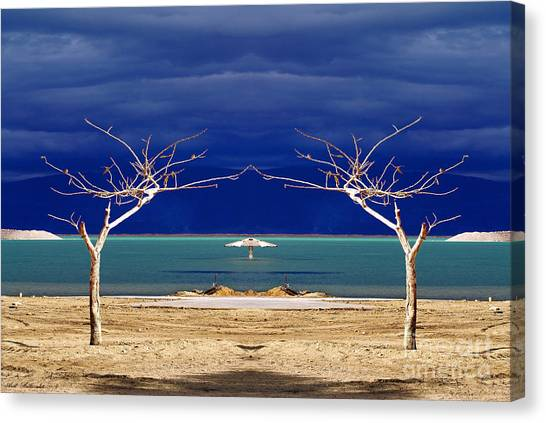 The Dancing Trees  02 Canvas Print by Arik Baltinester