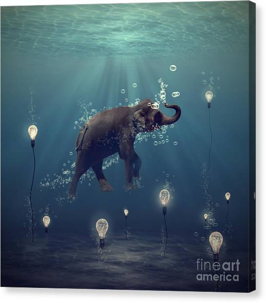 Elephants Canvas Print - The Dreamer by Martine Roch