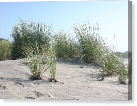 The Dunes Canvas Print by Dennis Curry