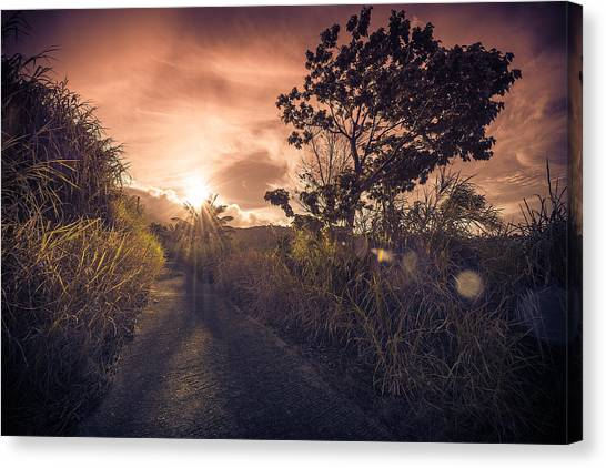 The Dusk Canvas Print