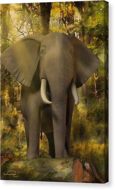 The Elephant Canvas Print by Emma Alvarez