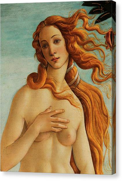 Botticelli Canvas Print - The Face Of Venus by Sandro Botticelli