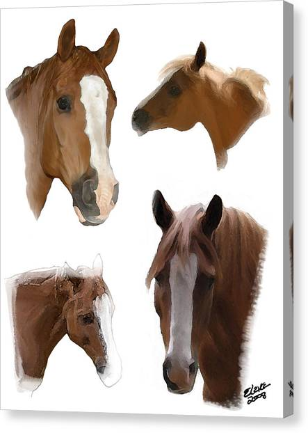 The Faces Of T Canvas Print by Elzire S