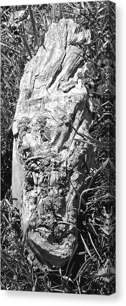 The Fallen - Unhidden Door Canvas Print