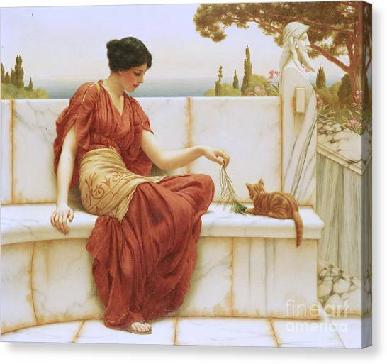 Cat Canvas Print - The Favorite by John William Godward