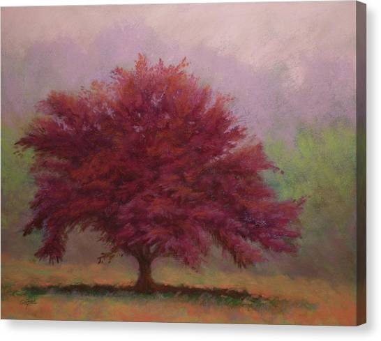 The Feather Tree Canvas Print by Paula Ann Ford